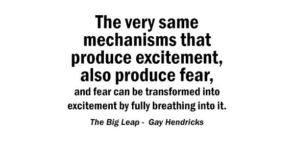 fear-excitement